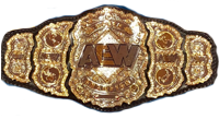 AEW World Championship